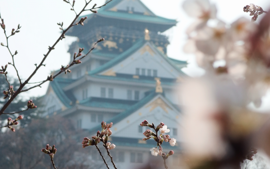 5 Reasons You Should Travel to Japan in the Spring